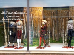 Autumn window at Fenwick, Newcastle (14 Oct 2013). Photograph by Graham Soult