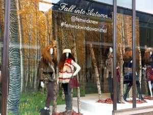 'Animal' autumn window at Fenwick, Newcastle (22 Oct 2013). Photograph by Graham Soult