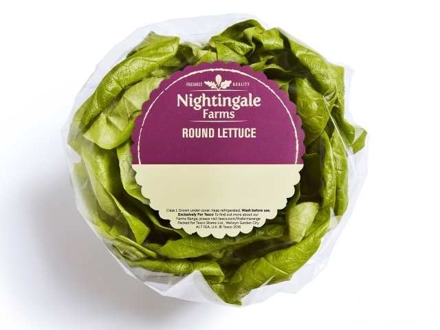 Lettuce from the Nightingale Farms salad range
